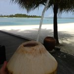 the coconut drink