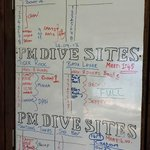 Dive board, figure it out...
