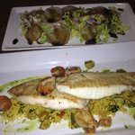 Fish of the Day with fresh Salad
