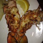 Lobster or jumbo shrimp