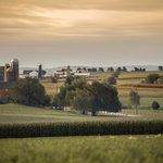 Surrounding farmlands
