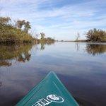 Kayaking Horicon Marsh