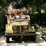 """Come un vero safari """" a bordo della jeep"""""""