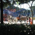 A cavallo nel Parco