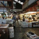 Fish market after 9am in the big market hall, The Tsukiji Market