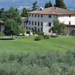 Villa Campestri as seen over the olive grove.