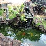 Sekiya's garden