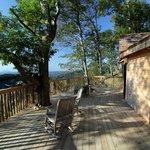 Barn Owl Treehouse Deck
