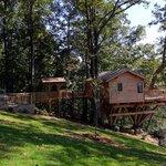 Barn Owl Treehouse Exterior