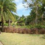 Maradiva grounds