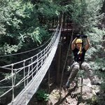 Swinging rope bridge
