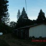 Foto de Muir Lodge Motel