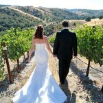 Vineyard Weddings at Calcareous in Paso Robles