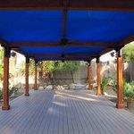 Yoga, Activities Area