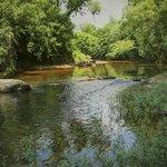 Banshee Reeks Nature Preserve Foto