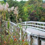 Along one of the walking paths nearest to the Long Island Sound.