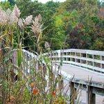 Sunken Meadow State Park