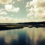 Views over marsh