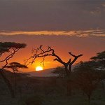 Sunrise in Ndutu region