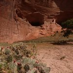 mummy cave ruins