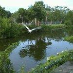 Foto de Periwinkle Park & Campground