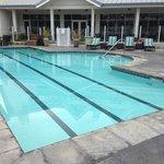 sonoma/petaluma sheraton pool