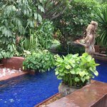 Swimming pool with nice landscaping to bring you away from the concrete surroundings