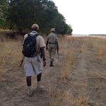 walking with Bertram and Robert