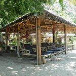 Relax area with hammocks and benches