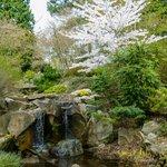 A pleasant waterfall