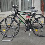 Free Bicycle Rental