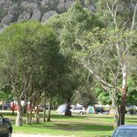 Shady and Grassy campsites