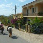 Village of Funchais