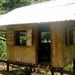 Bamboo cabin