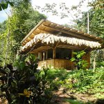 Photo de Finca Tierra Organic Permaculture Farm & Eco-Lodge