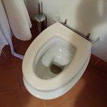 Tavoletta del wc rotta