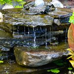 Beautiful small ponds and waterfall
