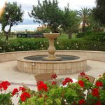poolside gardens