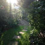 Early morning garden walk!