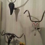 their version of longhorns...
