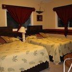 Olena Room
