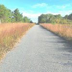 The paved running trail just outside