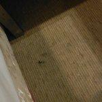 dirty rug