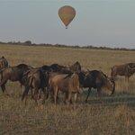 Hot air ballooning over the Mara