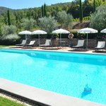 The nice pool.