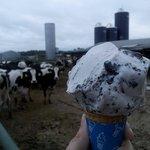 Hopkins Farm Creamery