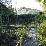 Beatrix's vegetable garden