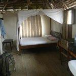 guest room w ensuite bathroom,mini fridge,fan, mosquito nets