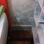 Hongos cubriendo toda la pared