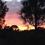 Son Jorbo sunset